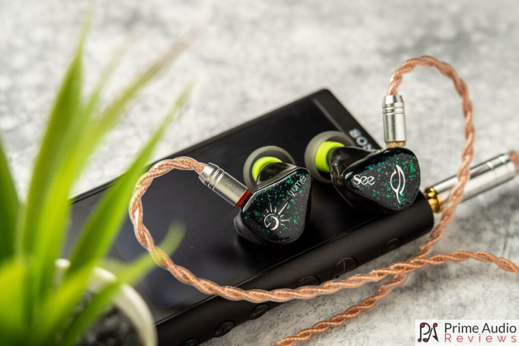 See Audio Yume shells and cable with Sony DAP