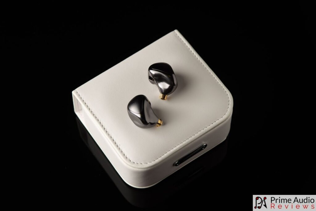Tin HiFi T5 with carrying case