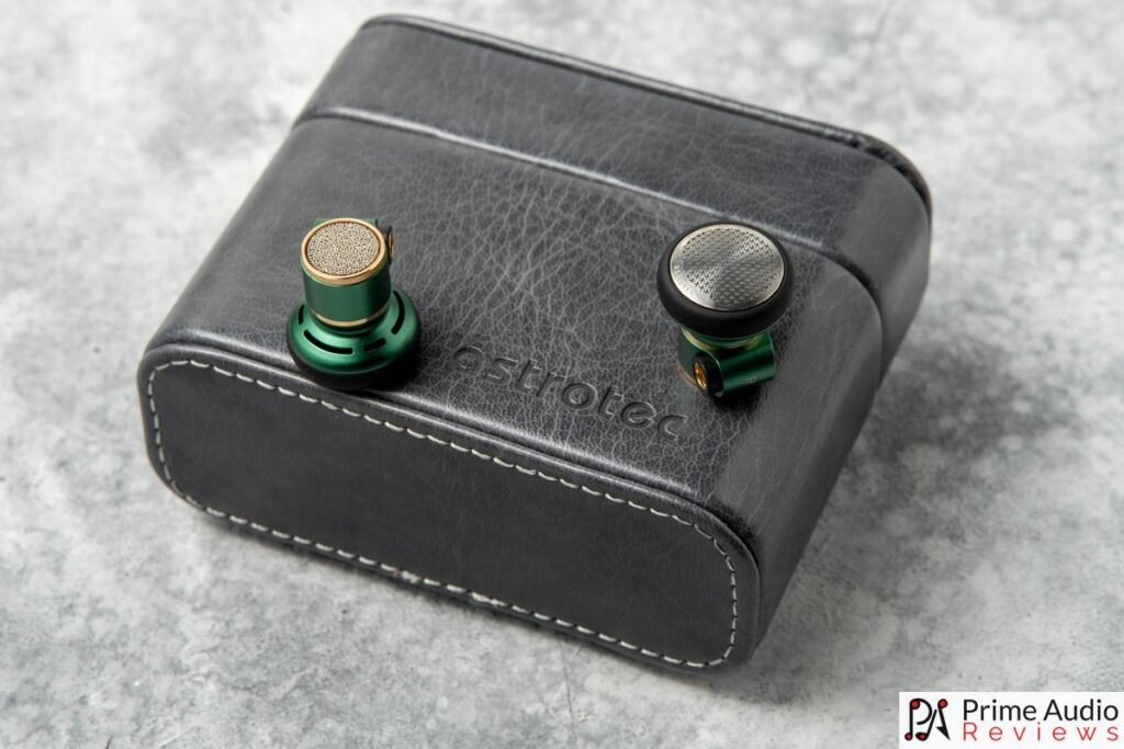 The Lyra Nature LE earbuds with carrying case