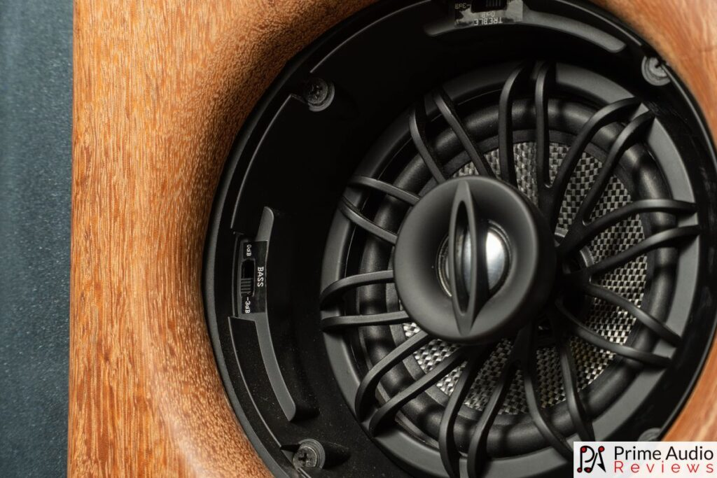 The R1 has tone switches at the edge of the woofer.